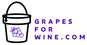 Grapes for wine Logo PNG White